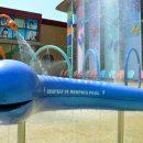 Splash pool decorations courtesy of Memphis Pool